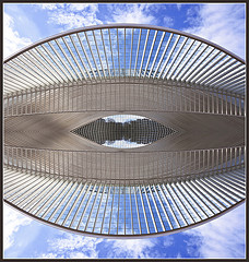 The Calatrava Eye